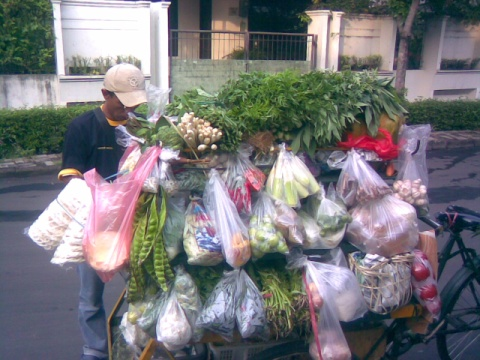 Tukang sayur, walking grocery store