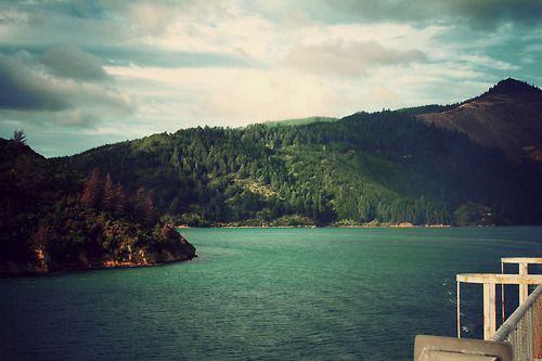 Cook Strait, South Island, Marlborough, New Zealand