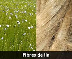 """Résultat de recherche d'images pour """"fibres de lin"""""""