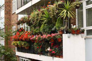 balcony-garden-23