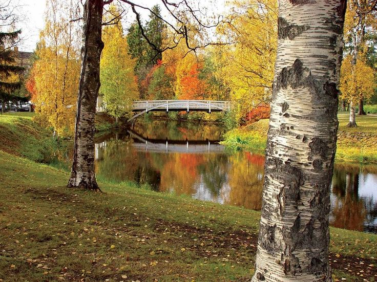 Ainolan puisto. Ainola park. Oulu, Finland.