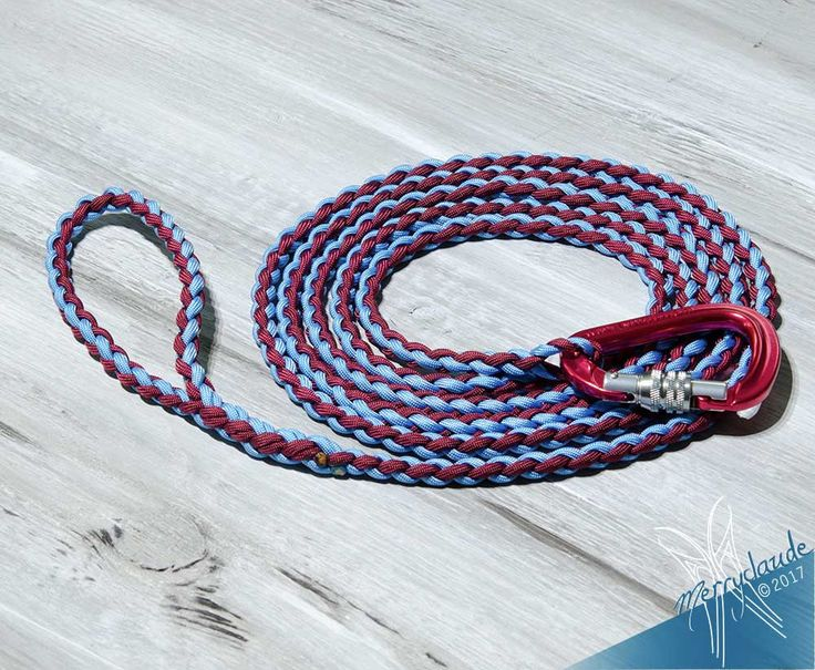 10.5' - Standard Paracord Dog leash - 4 strands - Screw climbing carabiner - Heavy Duty Baby Blue and Burgundy