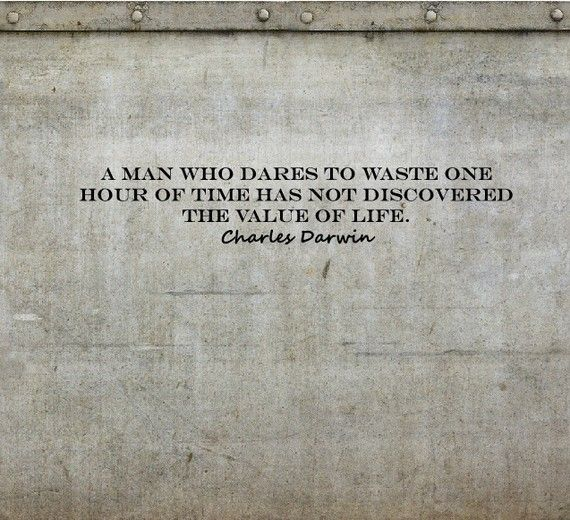 a man who dares to waste one hour of time has not discovered the value of live. – charles darwin. #quote #words #inspiration