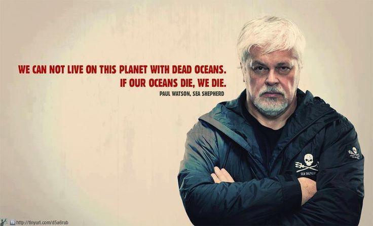 paul watson sea shepherd quotif our oceans die we die