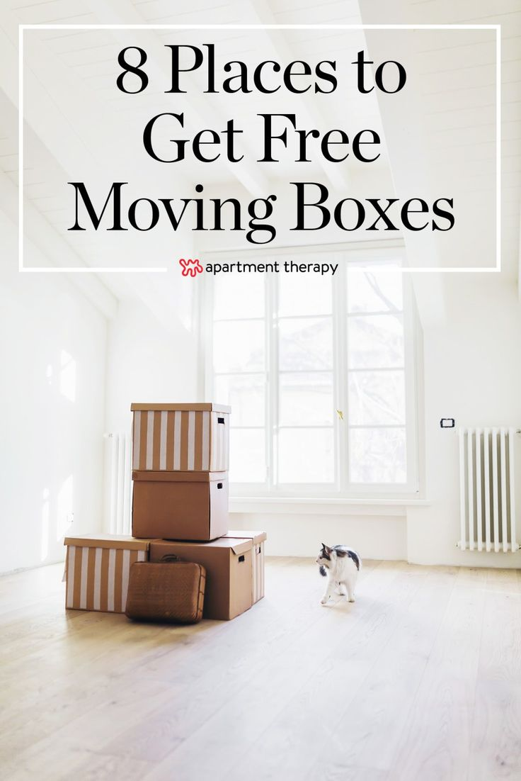 How to make a low cost ikea cat bed apartment therapy - 8 Places To Get Moving Boxes Free Of Charge