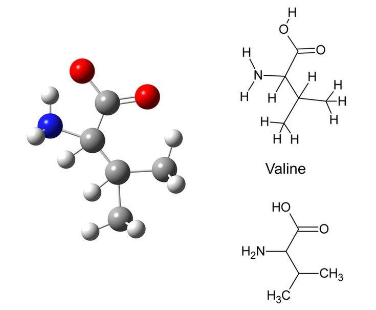 """Valin Valin ist eine essentielle Aminosäure und muss demzufolge mit der Nahrung aufgenommen werden. Es hat dient neben Leucin und Isoleucin zur Ernährung der Muskel. In der Kosmetik hat Valin als Bestandteil verschiedener Wirkstoffe eine Bedeutung: Peptamide 6 """"Hexapeptide-11"""" der Fa. Lonza, als peptitischer Anti-Falten-Wirkstoff aus den Aminosäuren Phenylalanine, Valine, Alanine and Proline PRODEW 500 …"""