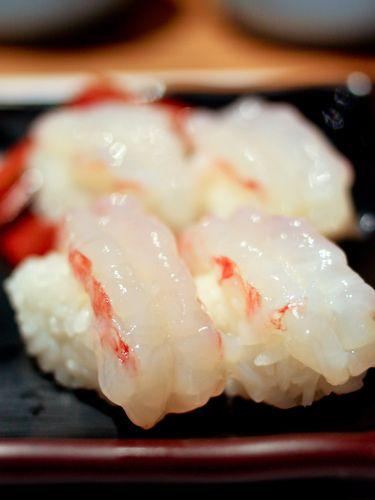 Shirimp Nigiri Sushi|海老にぎり