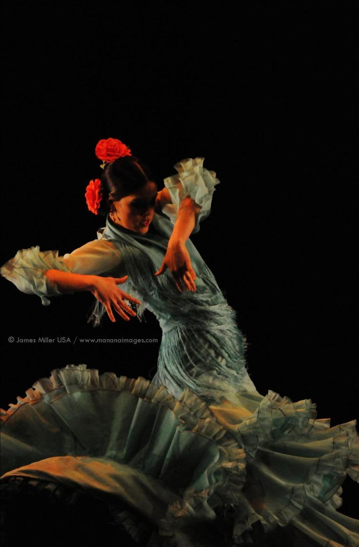 729 best arte flamenco y torero images on pinterest flamenco