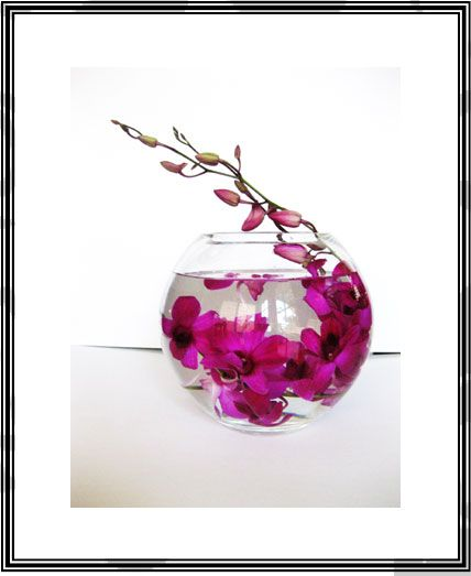 Best centerpieces fishbowl flowers images on pinterest