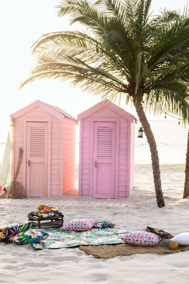 Pastel Beach Houses With Gorgeous Big Palm Tree