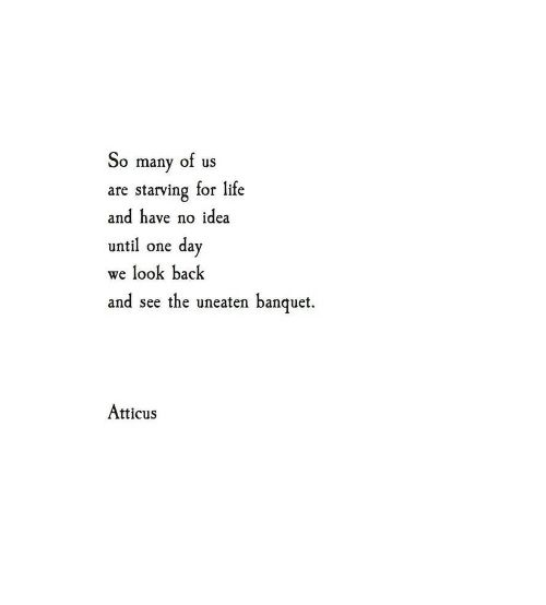 Wild Love Quotes: 25+ Best Pancake Quotes On Pinterest