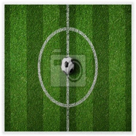 Soccer Field Center Wall Mural At Http://www.visionbedding.com/ Part 53