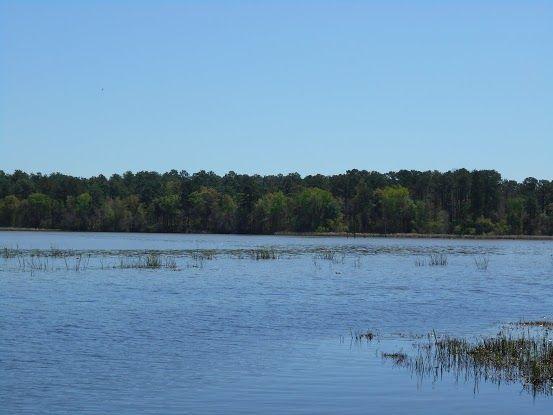Displaying dscn0075 jpg lake seminole pinterest phoenix for Lake seminole fishing