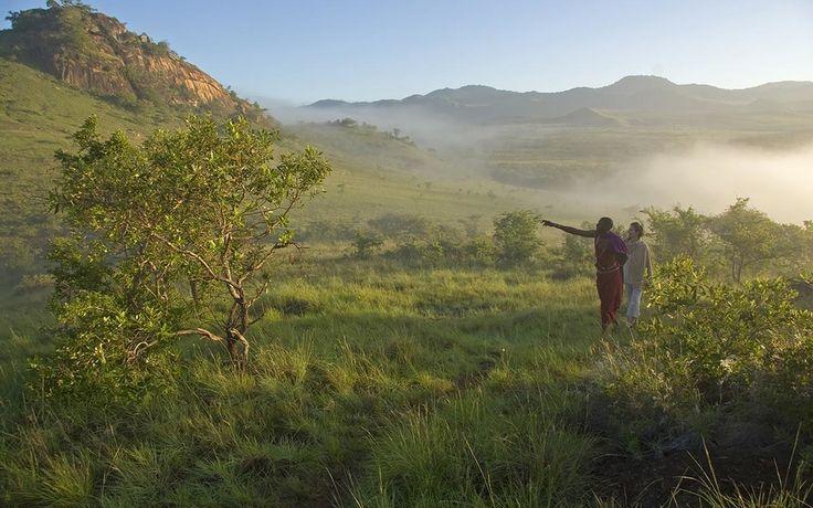 Cloud forest walks at Campi ya Kanzi