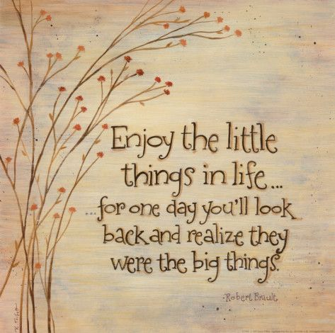 Enjoy the little things - Robert Brault
