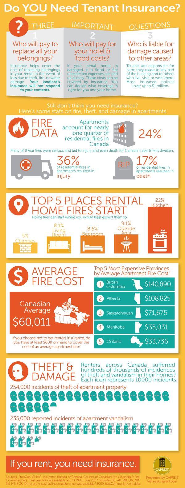 infographic rental insurance