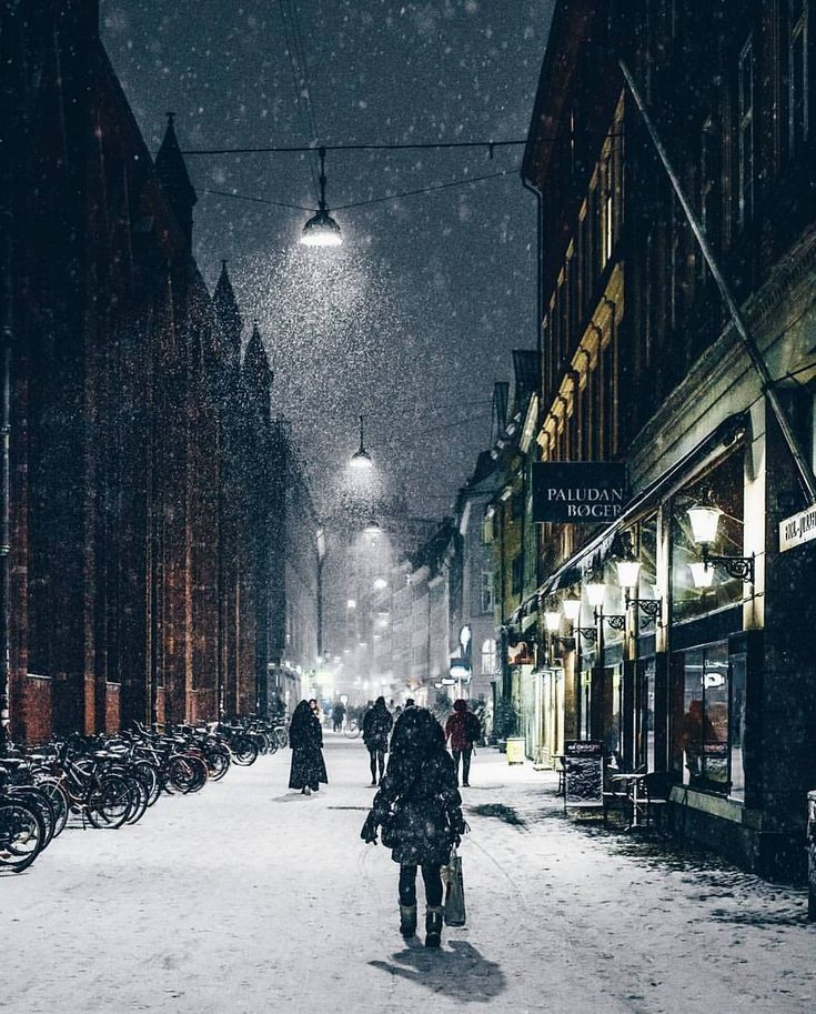 """24.2k Likes, 163 Comments - Living Europe (@living_europe) on Instagram: """"Walking in the snow ~ Copenhagen, Denmark Photo: @larsenkbh Congrats!  TAG someone you would like…"""""""