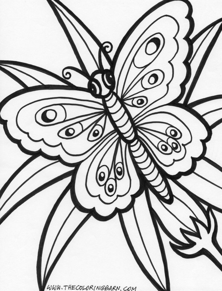 geometric butterfly coloring pages - photo #2