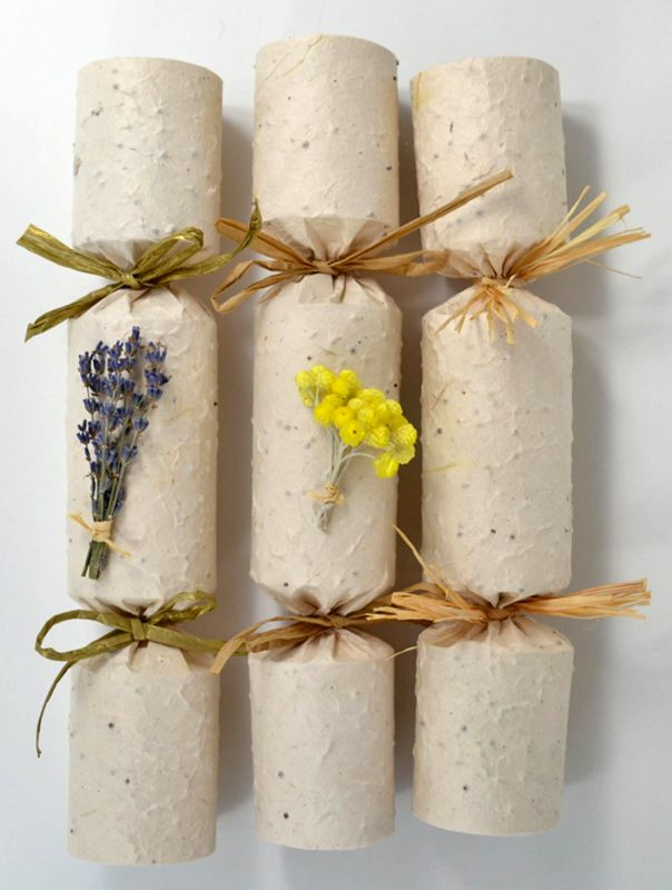 L'occtaine crackers. Banana seed paper paper crackers, that can be planted. Dried, pressed flower decoration.