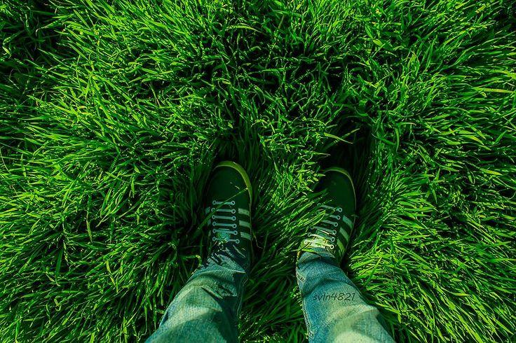 File From Where You Stand Green Grass Feet Svln4821 Jpg