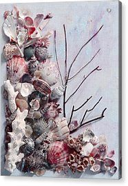 Shell Bouquet  No 6 Acrylic Print by Karin  Dawn Kelshall- Best