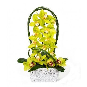 Fabulous | Flower Delivery NYC Florist | Plantshed.com | Two bright yellow Cymbidium Orchids with sword grass in a chic silver glass vase.
