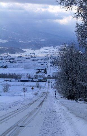 Furano basin in snowy morning - Furano, Hokkaido.