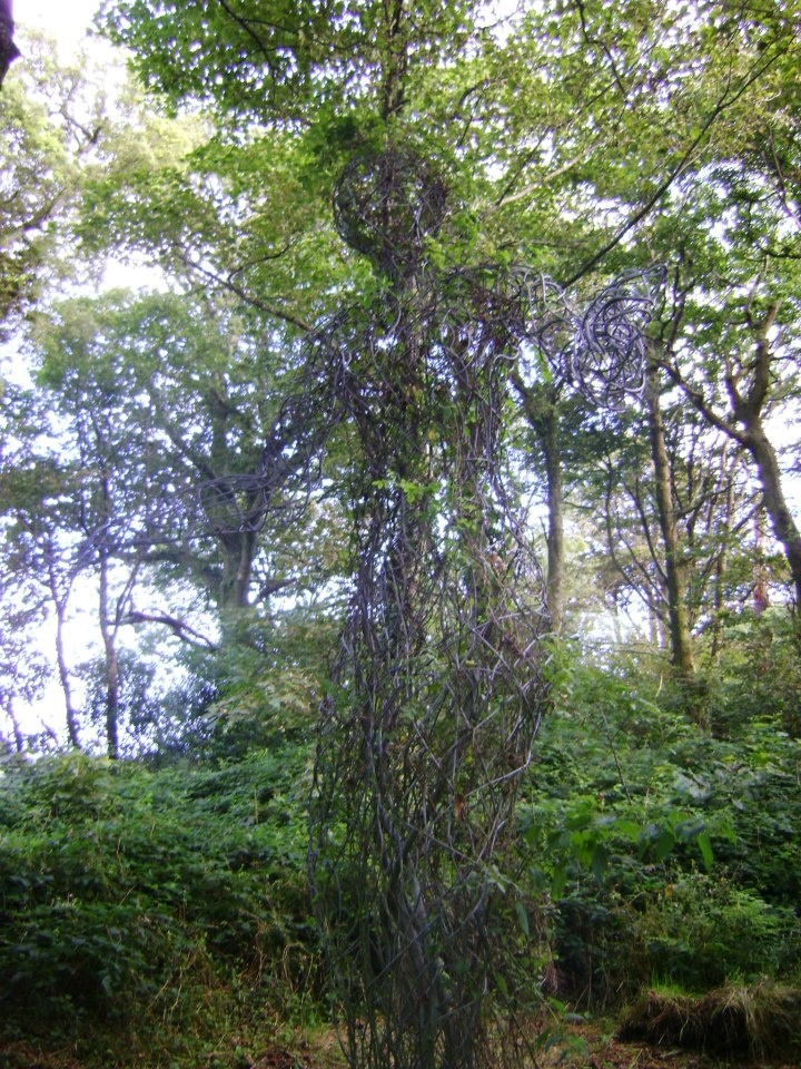 The Lost Gardens of Heligan, Cornwall.