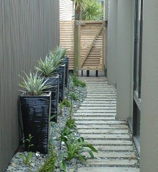 Small Garden Designs: Design Zealand Nativegallery Wellington Garden Design