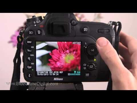 The Nikon D7100 can produce stunning image quality! But, in order to capture the cleanest image possible you need to understand how the camera's ISO feature works. This short clip is from our Basic Controls training DVD and streaming video on the Nikon D7100. It demonstrates how to manage the Auto ISO setting when shooting with an Advanced Exposure Mode. Visit our website at www.BlueCraneDigital.com