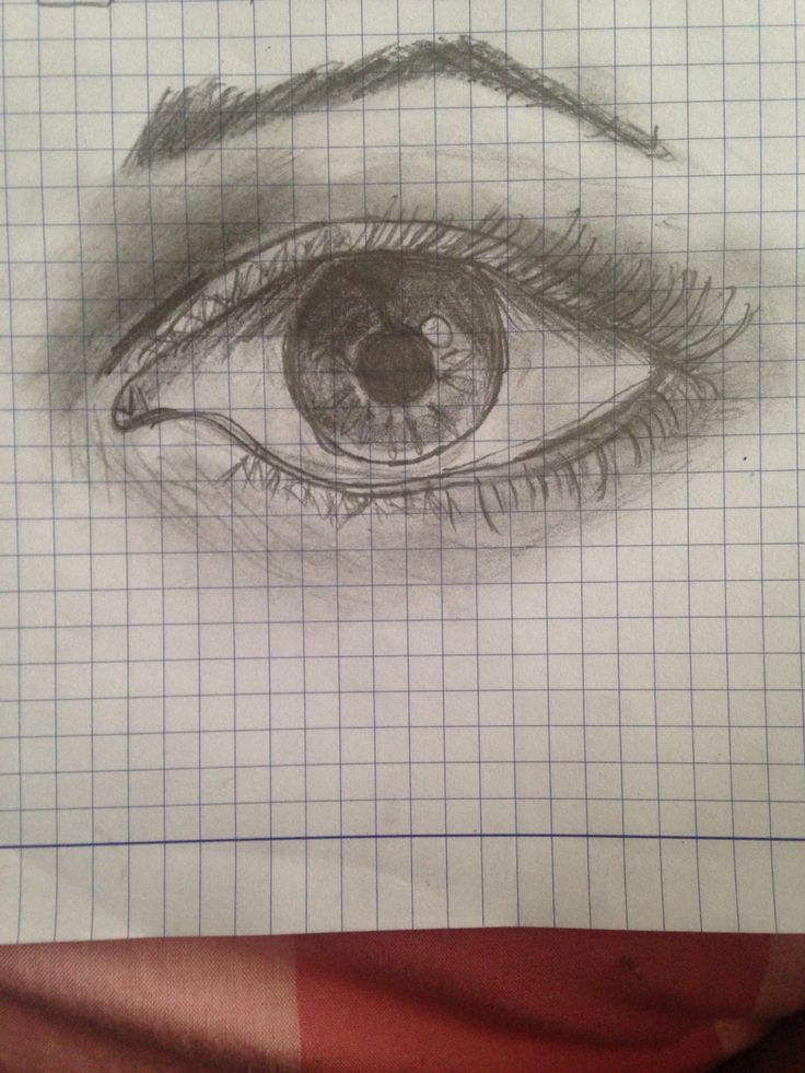 Drawing by: Diana Lupi Pencil work