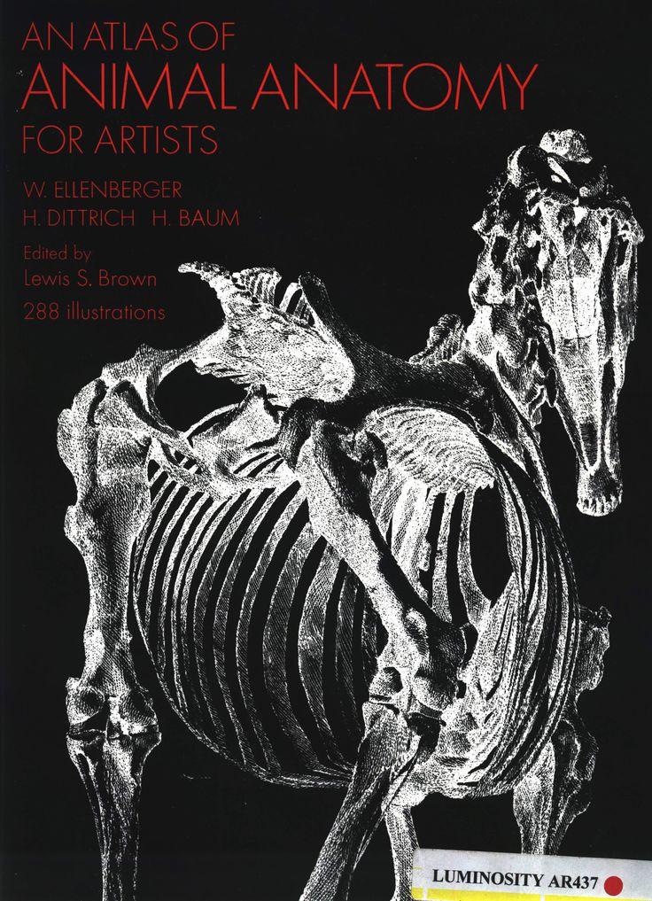 Mejores 52 imágenes de An atlas of ANIMAL ANATOMY for artists en ...