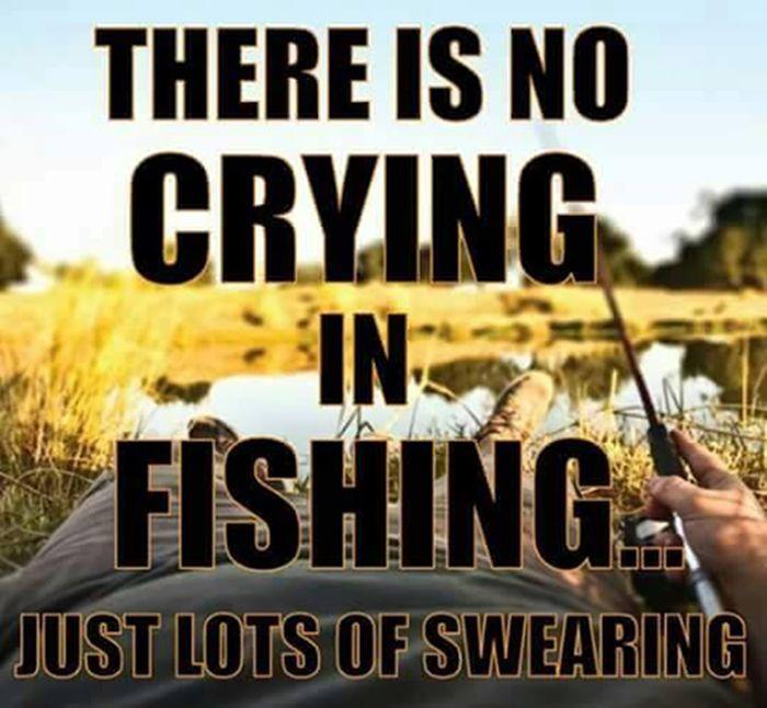 0695b3c608b949bb6af0083eeeb99534 fishing meme fishing quotes best 25 fishing meme ideas on pinterest funny fishing memes,Fishing Memes