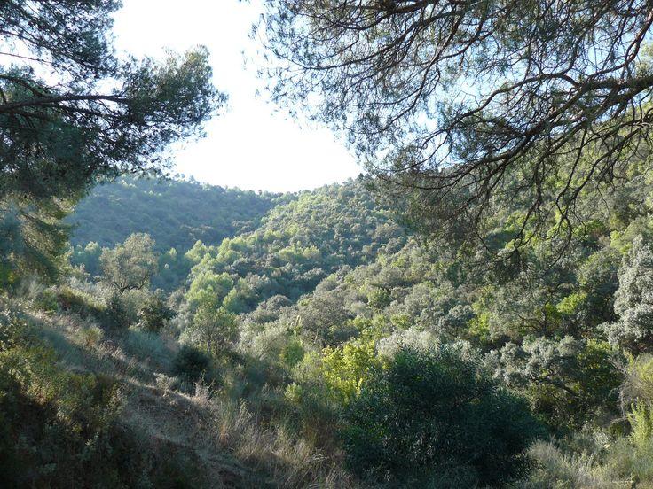 Malaga mountains
