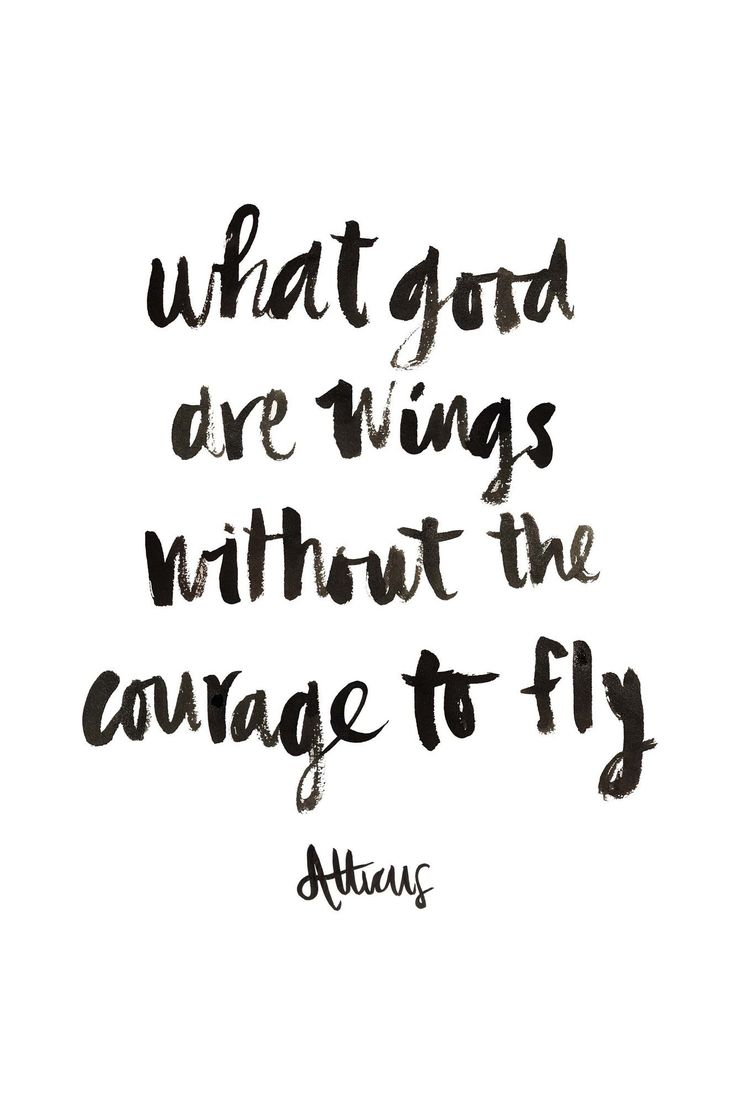 Courageous Quotes Best 25 Fly Quotes Ideas On Pinterest  Wing Quotes Quotes About