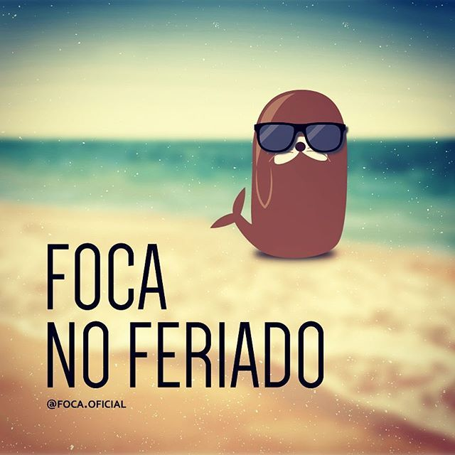 Focando #focanoferiado #foca #foco #feriado #ferias #bomdia