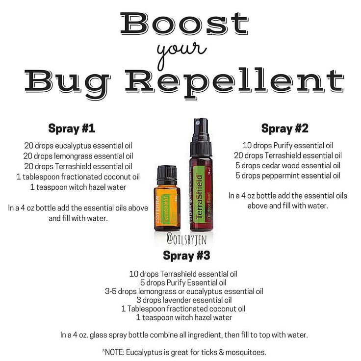 """It's that time of year! doTERRA has a bug repellent called TERRASHIELD. It is an AMAZING product but sometimes people want more of a """"kick"""" to their Terrashield and are looking for more recipes. Here are some very simple & great recipes to make your own homemade bug spray. The main ingredient you will need are essential oils. There are a few different recipe options below. The best essential oils to use for insect & pest repellant are citronella, lavender, peppermint, cedar wood, lemon..."""