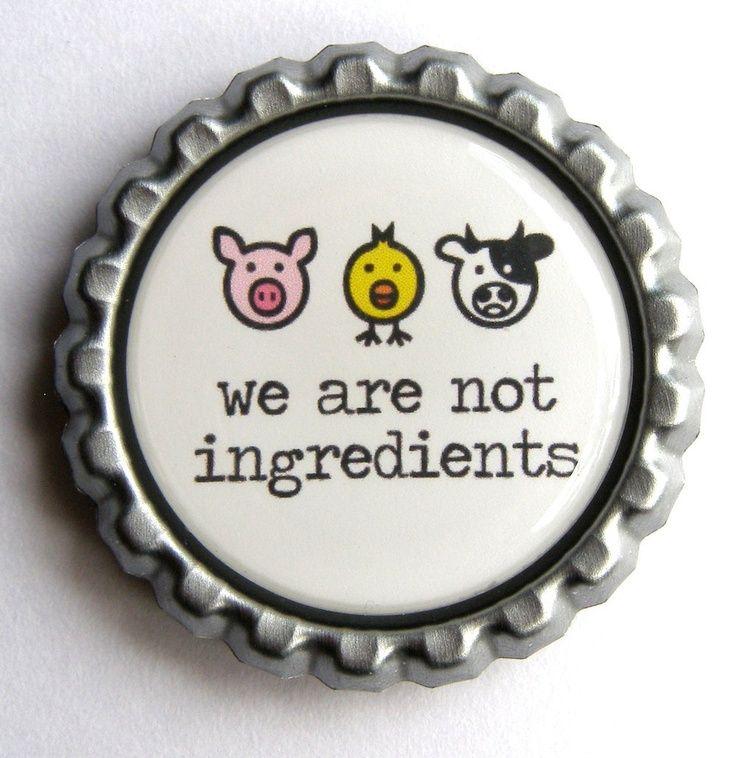 No somos ingredientes.