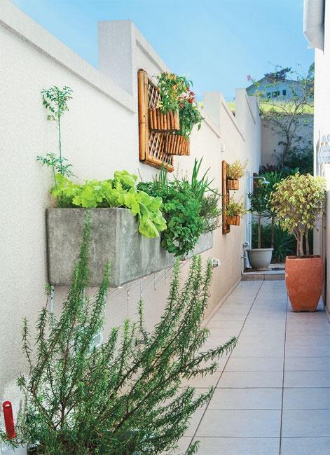 Mais uma horta vertical