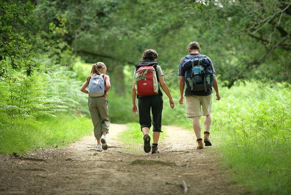 Y para los amantes de la naturaleza, senderismo, 10 kilometros con guía