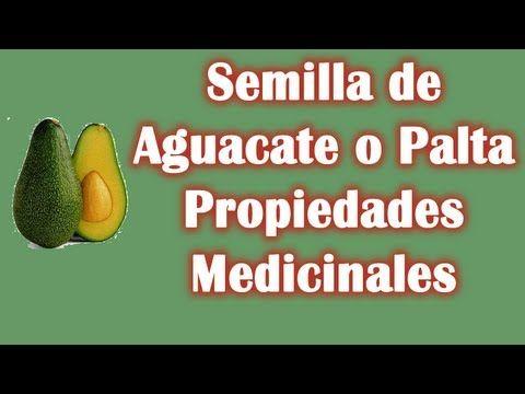 Las Propiedades Medicinales del Aguacate o Palta. Visita nuestro canal: https://www.youtube.com/user/LaHierbasMedicinales
