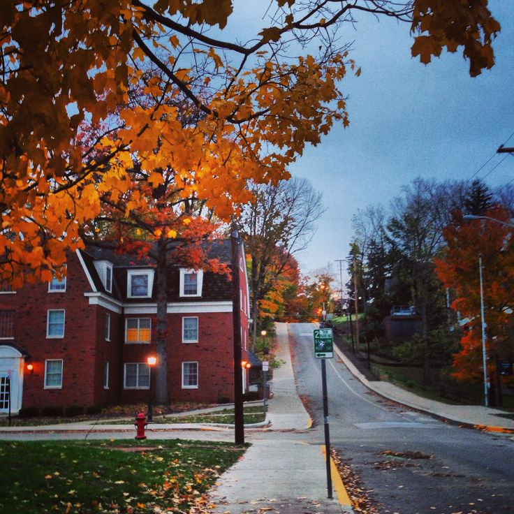 Jeff Hill may be an exhausting walk, but you can't deny it's beauty in fall.