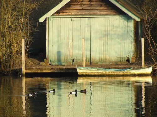 Old Boat Shed Hectic Eclectic Photography Pinterest