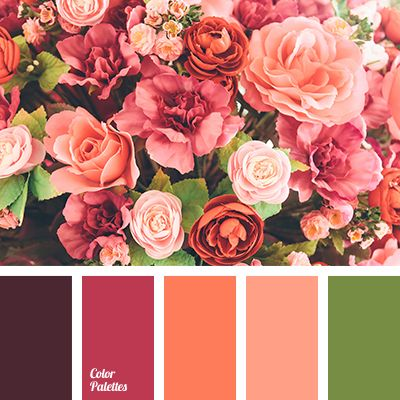 color matching, color solution for living room, coral color, coral-pink color, lime color, maroon color, orange color, orange shades, pale coral color, raspberry color, red color.