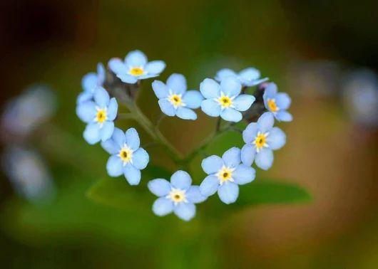 Ak si urobíte čas a napíšete si zoznam všetkého, za čo ste vďační, a budete pritom prežívať pocity vďačnosti, každý deň sa budete cítiť skvele. Frekvencia vašich vibrácií bude vysoká a budete prežívať dni naplnení láskou za to, že žijete, a všade, kam pôjdete, prinesiete radosť a budete pozitívne ovplyvňovať každého, koho stretnete. Keď budete žiť takýmto životom, všetko, čo chcete, dostanete ešte skôr, ako o to požiadate.