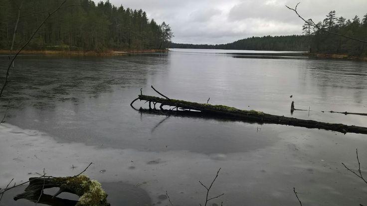 Pieni Ritojärvi, Lieksa