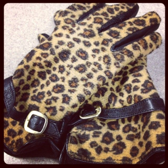 1000 Images About Everything Leopard And Cheetah Prints