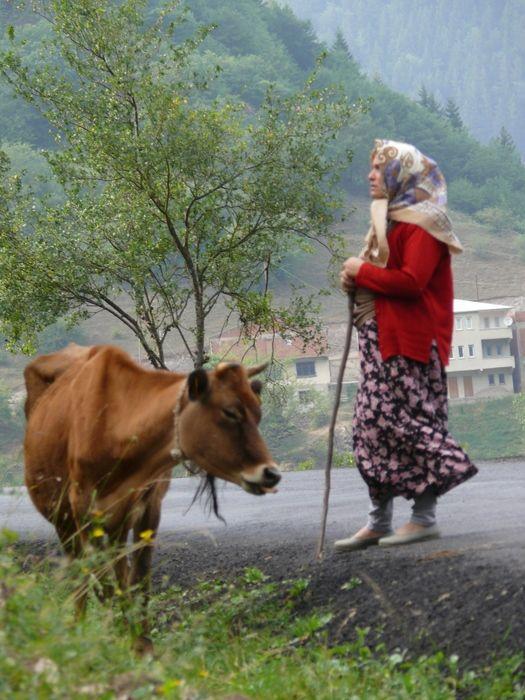 Karadeniz Köylüsü