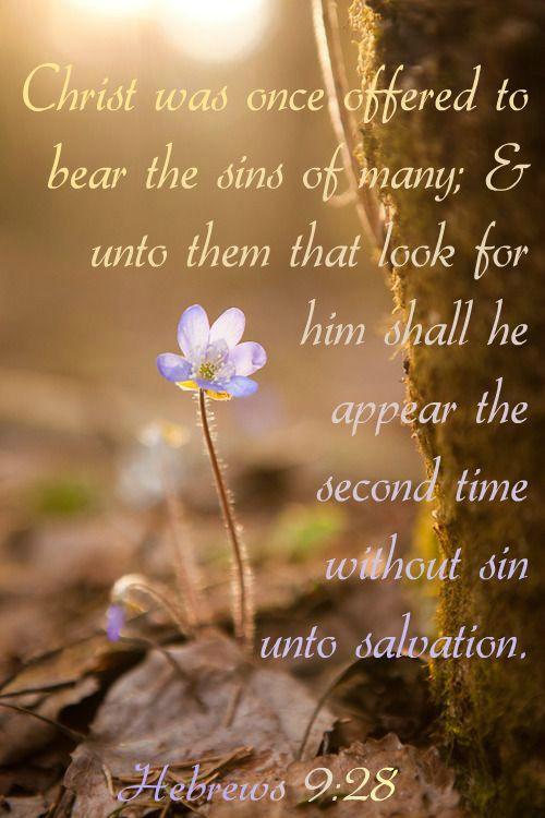 Hebrews 9:28 KJV
