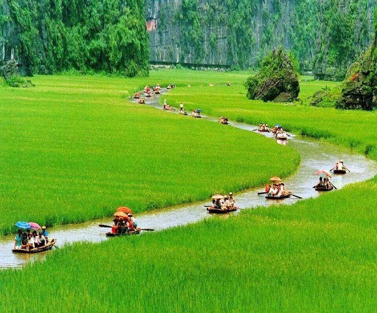 Cuc Phuong National Park, Vietnam ... ♥♡♥